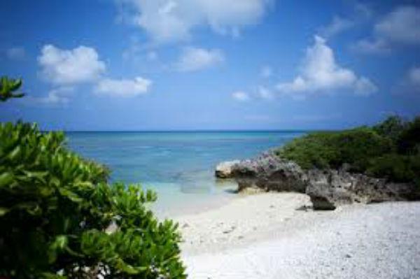 花粉の時期に夫婦で沖縄旅行へ行ったときの体験談