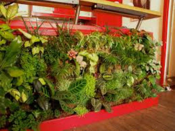 100均にあるものでガーデニング雑貨を作ってかわいく素敵なお庭をつくろう!