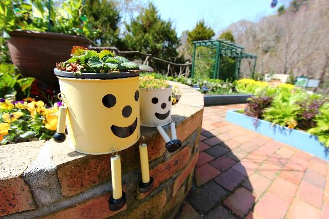 庭を作って、生活に緑の癒しを。生活のための庭作りとお手入れ。