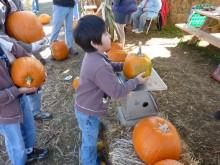 ハロウィンを楽しもう(1) ~マイかぼちゃを家族でゲット~